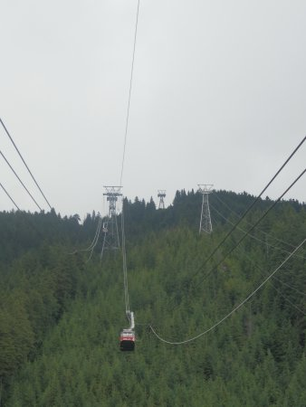 Grouse Mountain Skyride: Grouse Mountain Gondola Skyride