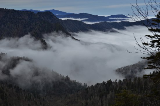 Upper Tremont Road in Great Smoky Mountains National Park : Mt LeConte