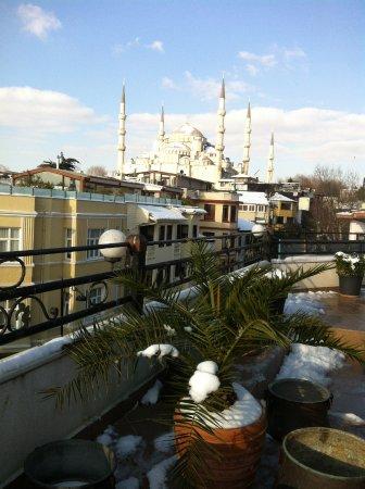 Hippodrome Hotel: Вид из террасы кафе соседнего отеля (куда нас отводили на завтрак)