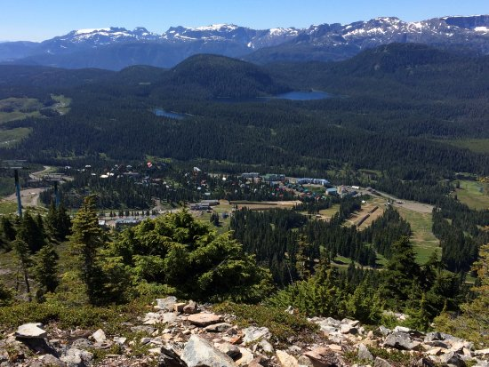 Mount Washington, Canada: view of the resort from the top