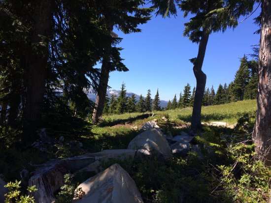 Mount Washington, Kanada: part of the trail down