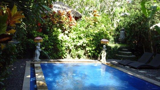 Tropical Bali Hotel: Piscine très agréable 24 h sur 24