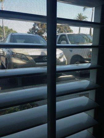 BEST WESTERN PLUS Island Palms Hotel & Marina: car park view