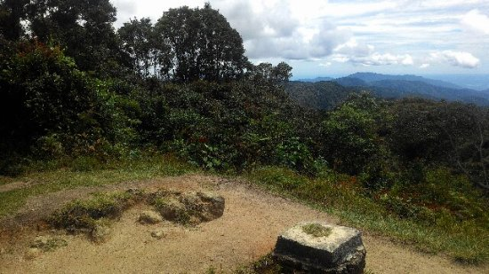 Cameron Highlands Trail No. 10: The top