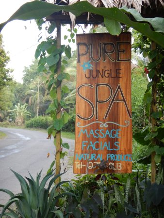 Pure Jungle Spa: Signage