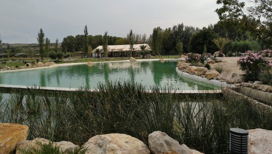 Paracuellos de Jiloca, España: Lago piscina (solo verano)