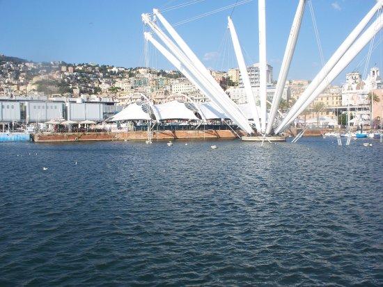 Arena del Mare