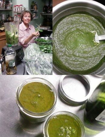 Tubac, AZ: Mom making Pesto!