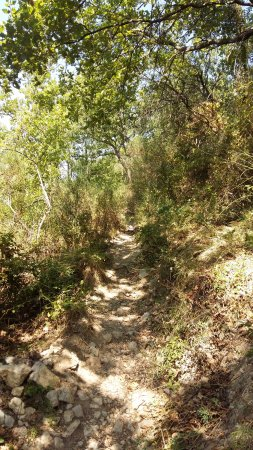Saint-Jeannet, Frankrijk: Des sentiers de promenade à l'ombre avant les sommets ...
