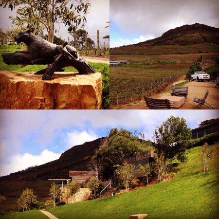 Constantia, Südafrika: photo0.jpg