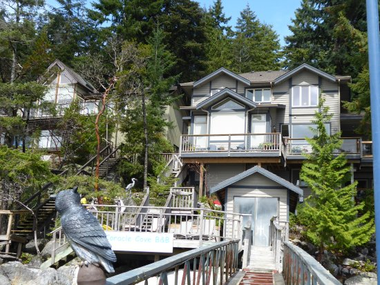 Sechelt, Καναδάς: Back towards the house
