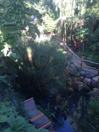 Jardin de los Sentidos: photo0.jpg