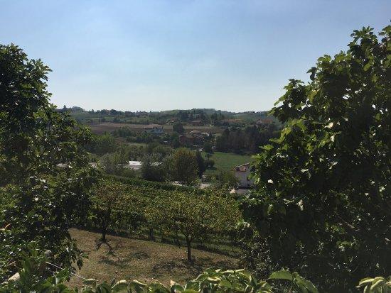 Costigliole d'Asti, Italien: Agriturismo Orlandi