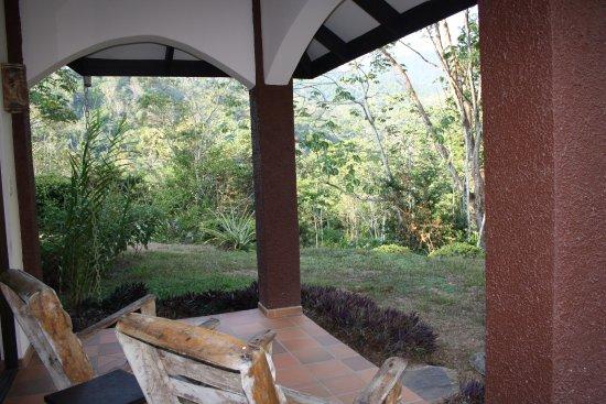 La Cacatua Lodge: Blick auf den Dschungel