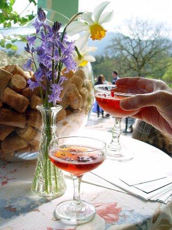 Cowichan Bay, Canada: Vinoteca Zanatta, drinks await