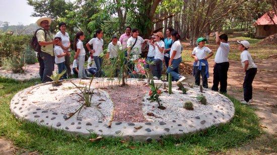 La Mancha, เม็กซิโก: Jardín demostrativo