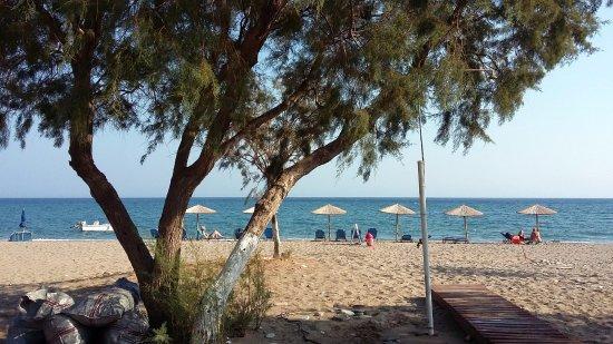 Pavlis Studios : Het strand bij de studios.... alleen even de straat over