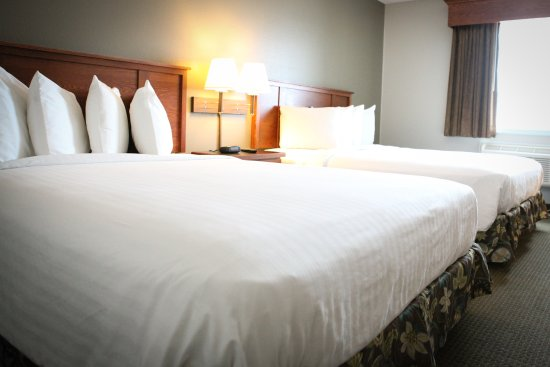 GrandStay Hotel & Suites Perham, MN: 2 Queen Guest Room