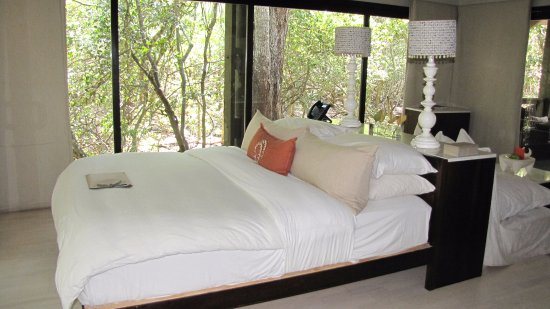 Phinda Private Game Reserve, Νότια Αφρική: #17 Suite