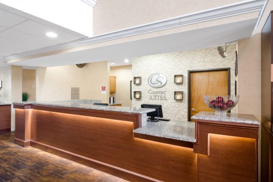 Comfort Suites Las Colinas Center: Front Desk