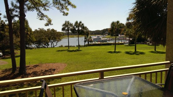 Sea Pines Resort : View from the patio.