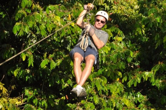 Chiclets Tree Canopy Tour: adventure