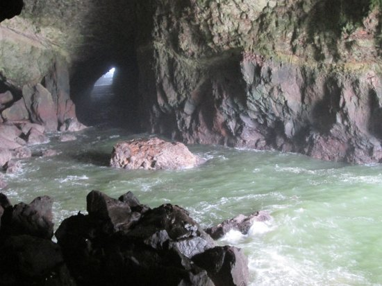 Sea Lion Caves: the cave