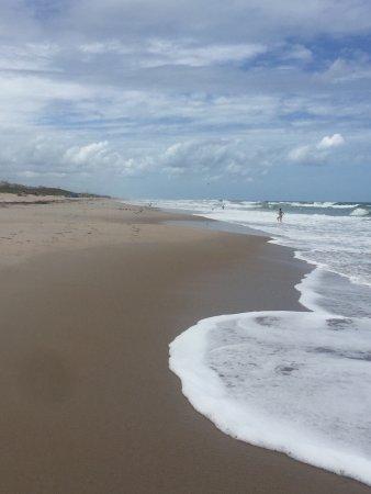 Canaveral National Seashore: photo8.jpg