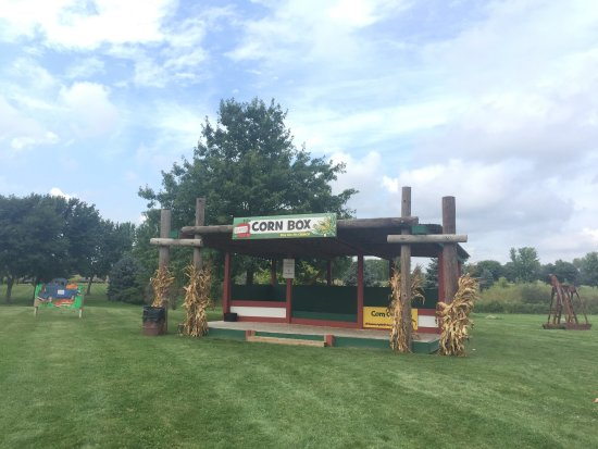 Woodstock, IL: photo3.jpg