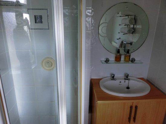 Roch, UK: The Westwood ensuite shower room :).