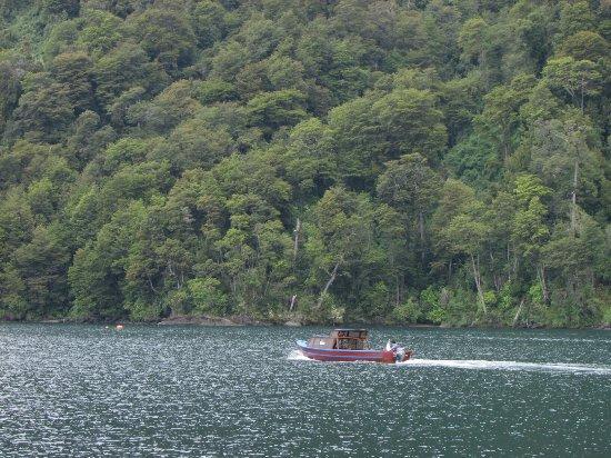 Lago Todos Los Santos : Lago