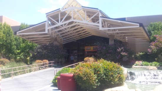 Pechanga Resort and Casino Photo