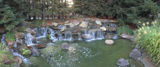 Gilroy, CA: Relaxing