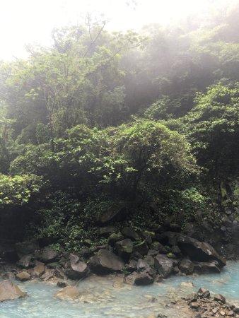 Tenorio Volcano National Park, Costa Rica: photo8.jpg
