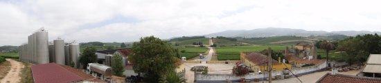 Cadaval, Portugal: Quinta do Gradil - Panorâmica