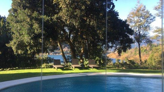 Hotel Antumalal: Visão exuberante, do jardim, do spa, do quarto ou do café da manhã. Dá para respirar melhor e su