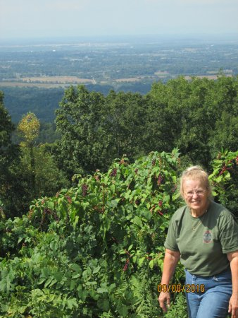 Cosby, TN: Overlooking Maryville from Foothills Parkway