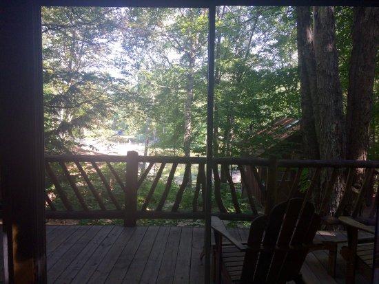 Minerva, NY: Vistas desde la cabaña