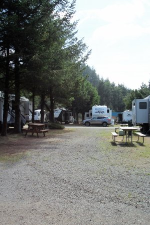 Seaview, WA: Two vacant sites; all sites are back in