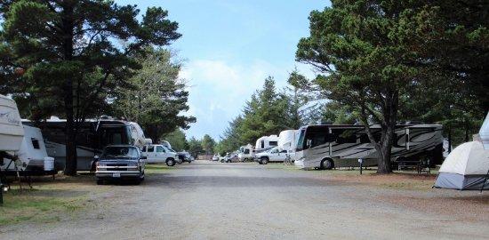 Seaview, วอชิงตัน: General campsites