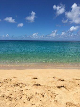 Waimea Bay : photo1.jpg