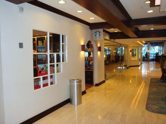 Санни-Айлс-Бич, Флорида: Lobby
