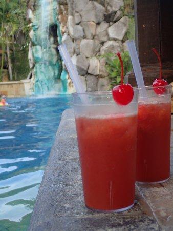 Hotel Vila Lumbung: nice pool area