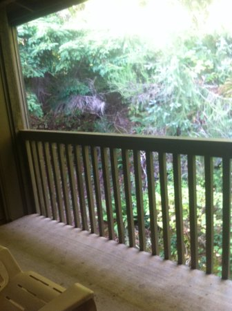 Olympic Suites Inn: My private terrace looking at the woods, room 309 or 310
