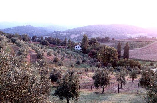 Agriturismo Val della Pieve: photo0.jpg
