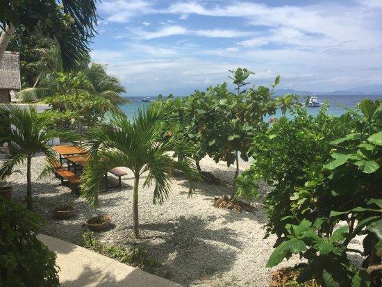 Foto de Sogod Bay Scuba Resort