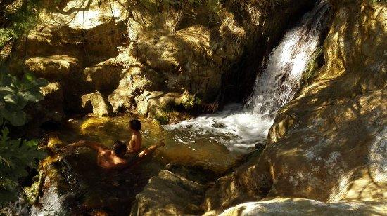 Santa Fe, España: Ideal con esos trancos naturales