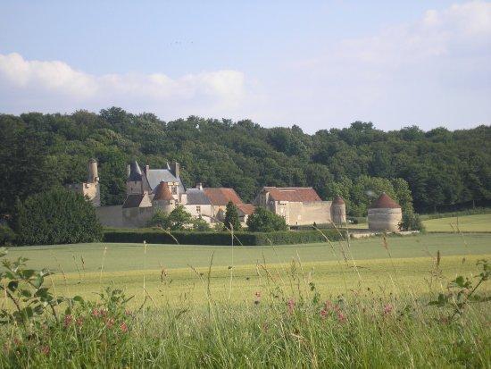 Lucy-sur-Yonne, França: Le château de Faulin