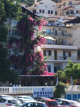 Hotel Koza: Harika bir yer. Kaş'a gelipte Otel Koza'da kalmak bir ayrıcalıktır. Şiddetle tavsiye ediyorum 👍