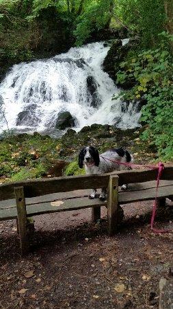 Trefriw, UK: Fairy Falls Waterfall